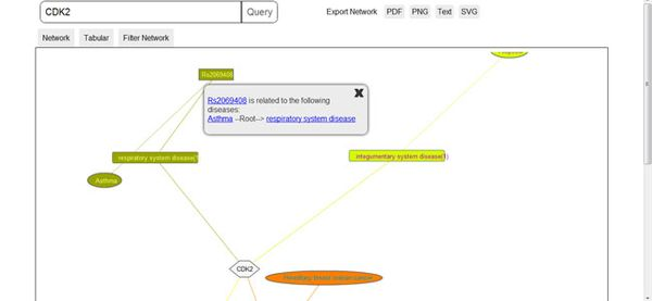 Google Summer of Code 2012: Interactive Network Visualization for Gene Wiki Plus